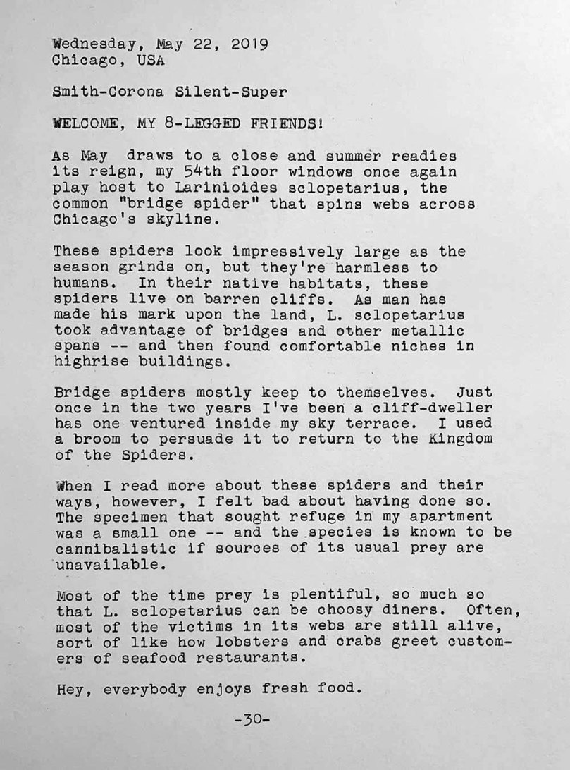 Photo is of a typewritten page with the following text. Wednesday, May 22, 2019. Chicago, USA. Smith-Corona Silent-Super. Welcome, my 8-legged friends! As May draws to a close and summer readies its reign, my 54th floor windows once again play host to Larinioides sclopetarius, the common bridge spider that spins webs across Chicago's skyline. These spiders look impressively large as the season grinds on, but they're harmless to humans. In their native habitats, they live on barren cliffs. As man made his mark upon the land, L. sclopetarius took advantage of bridges and other metallic spans and then found comfortable niches in highrise buildings. Bridge spiders mostly keep to themselves. Just once in the two years I've been a cliff-dweller has one ventured inside my sky terrace. I used a broom to persuade it to return to the Kingdom of the Spiders. When I read more about these spiders and their ways, however, I felt bad about having done so. The specimen that sought refuge In my apartment was a small one and the species is known to be cannibalistic if sources of its usual prey are unavailable. Most of the time prey is plentiful, so much so that L. sclopetarius can be choosy diners. Often, most of the victims in its webs are still alive, sort of like how lobsters and crabs greet customers of seafood restaurants. Hey, everybody enjoys fresh food.